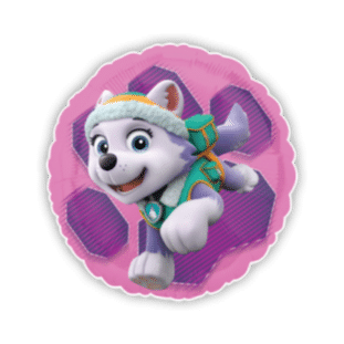 Paw Patrol Everest Rescue Pup Balloon