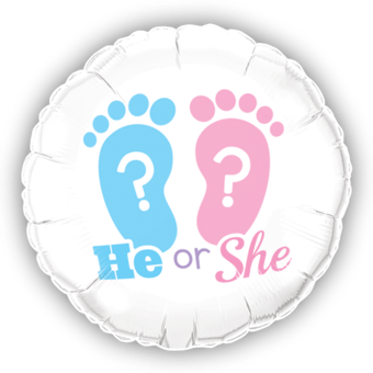 New Baby Shower He or She