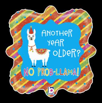 Year Older No Prob Llama