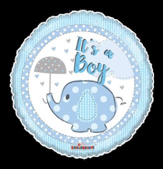 Its a Boy Elephant