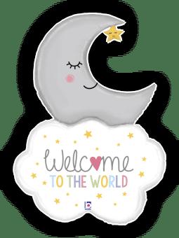 Welcome Baby Moon